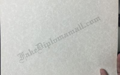 Buy diploma,Goatskin Parchment Paper
