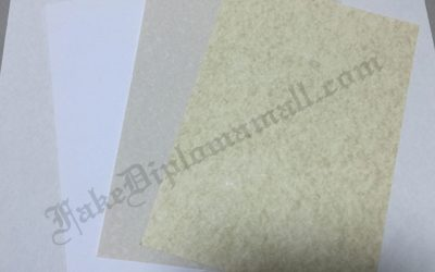 Fake degree, Goatskin Parchment Paper and other Papers