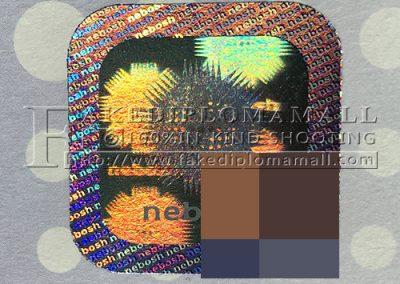 NEBOSH Hologram