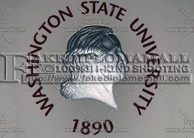 Washington State University Emblem