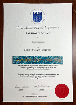 Dublin Institute of Technology (DIT) Fake Diploma Sample