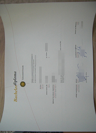 Buy Utrecht University Fake Diploma Online