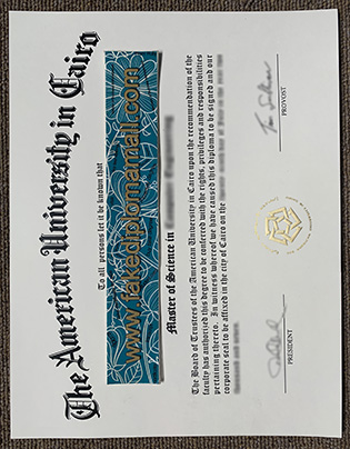 The American University in Cairo Fake Diploma Selling Online