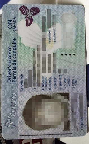 Can I Buy A Fake Ontario Driver Licence Online?