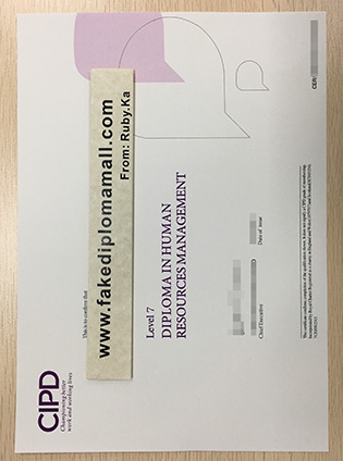 What Is The Cost of The CIPD Level 7 Diploma?
