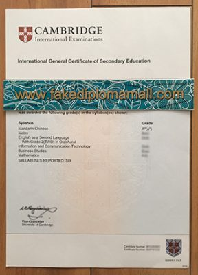 Where to Buy IGCSE Fake Certificate, Buy CIE Fake Certificate