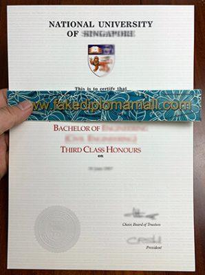 NUS Diploma, National University of Singapore Degree Sample