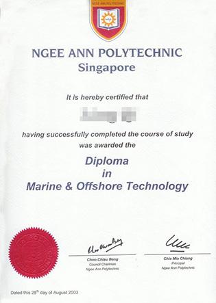 Ngee Ann Polytechnic Diploma Sample
