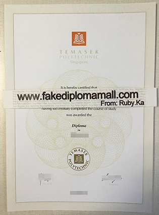 Singapore Temasek Polytechnic Degree Sample