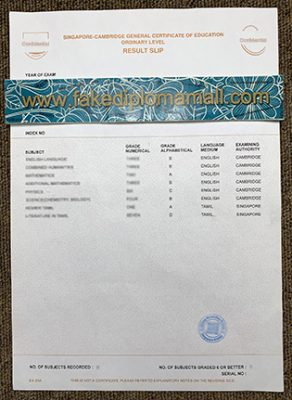 Fake Singapore GCE A Level certificate Result Slip