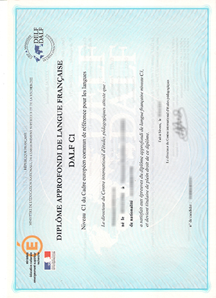Where Can I Buy A Fake DELF/DALF Diploma Online?