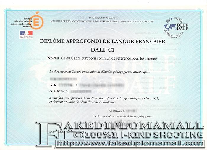 DALF Fake Diploma