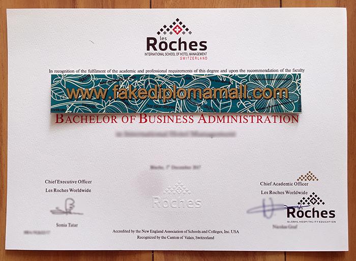 Les Roches Fake Diploma