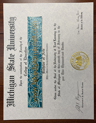 Fake MSU Diploma | Michigan State University Degree Sample