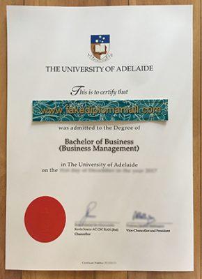 The University of Adelaide Business Management Degree Sample