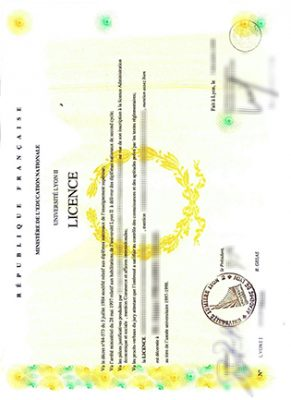How To Get The Université Lyon II Fake Diploma Scan Copy Within One Day?
