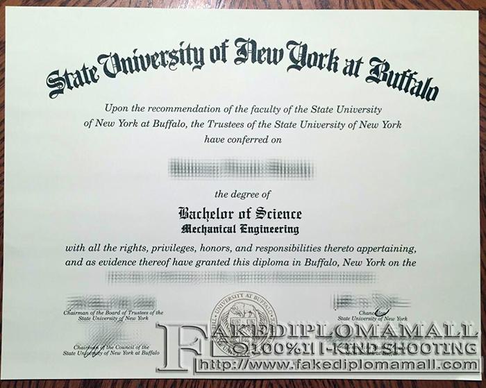 University at Buffalo Fake Diploma