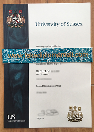 Bachelor of Science Degree From University of Sussex in Brighton