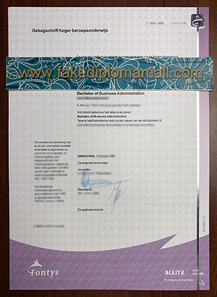 Fontys University Fake Diploma Worth Struggling in The Dutch