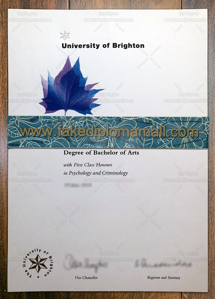 University of Brighton Fake Degree